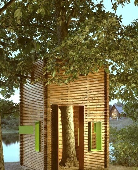 A House For A Tree